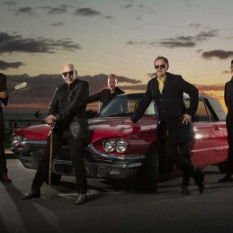 The Black Sorrows, Original Artist