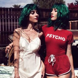 The Veronicas, Entertainment